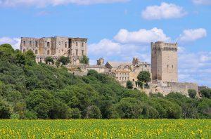 Die Abtei Montmajour liegt nordöstlich von Arles.