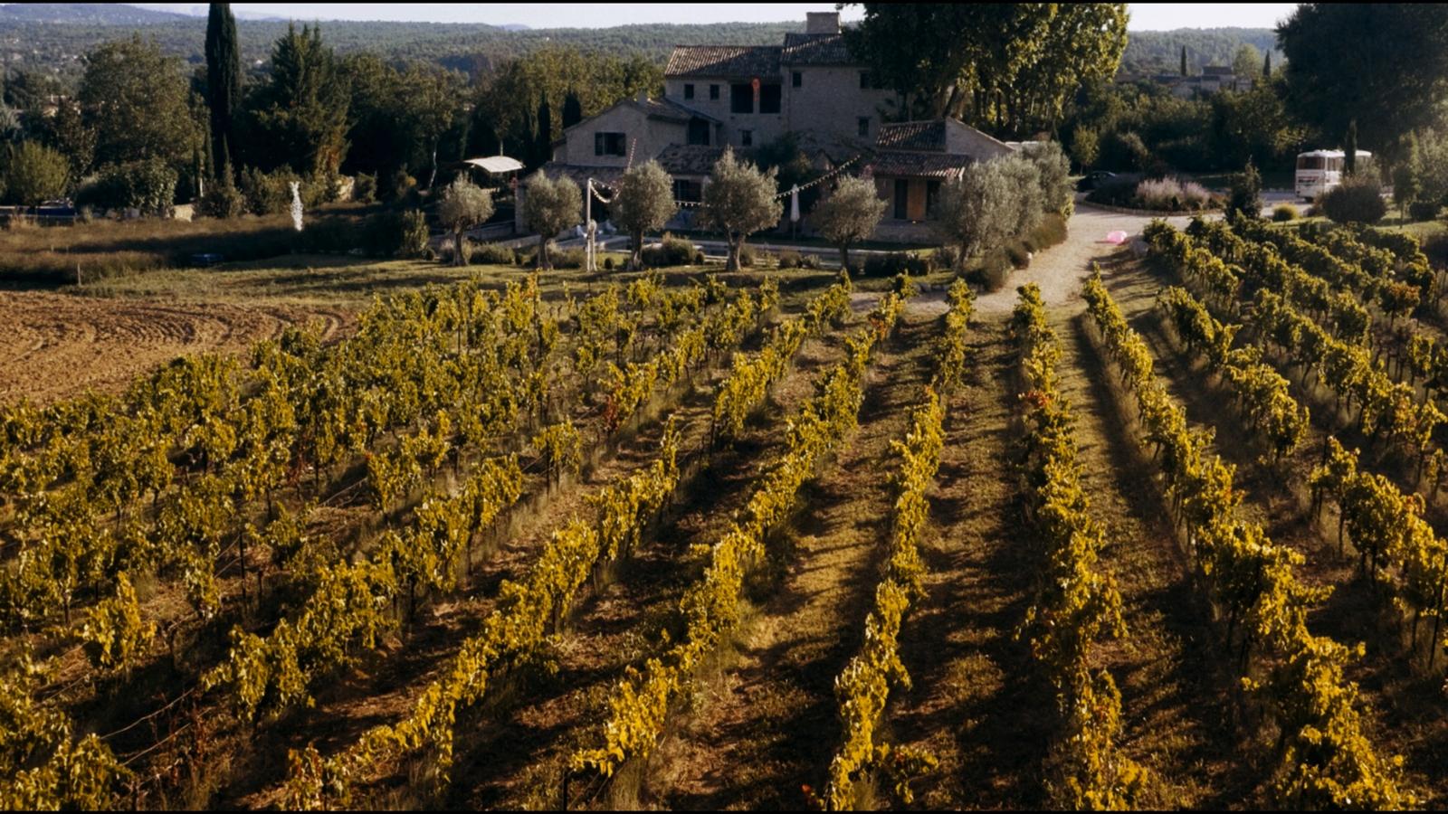 """So haben Sie die Provence garantiert noch nicht erlebt: Die neue Komödie """"Affenkönig"""" lädt ein zu einem wahnwitzigen Trip ins malerische Frankreich."""
