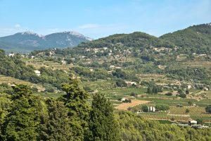 Bandol ist ein Anbaugebiet für Wein.