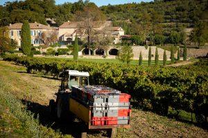 """Jetzt wurde bekannt, dass das Weingut """"Château Miraval"""" zur Scheidungsmasse von Angelina Jolia und Brad Pitt gehört. Foto: Serge Chapuis, www.chapuis-photo.com"""