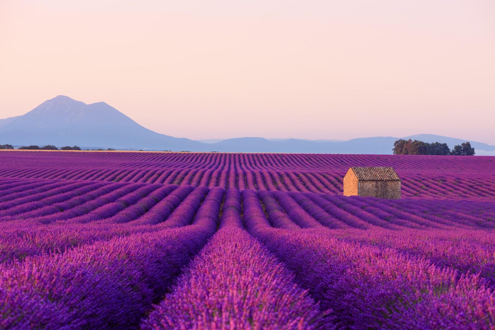 Die Provence ist eine wunderschöne Landschaft im Südosten von Frankreich.